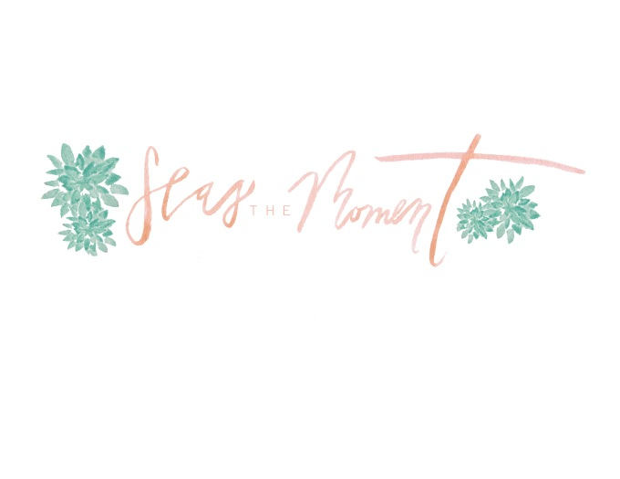 SEAS logo 3 peach
